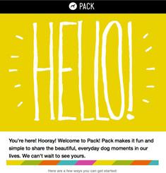 Pack Dog Newsletter