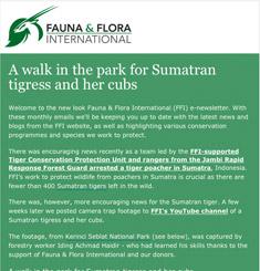 Fauna Flora Newsletter