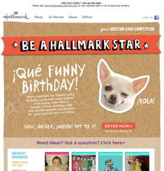 Hallmark Newsletter