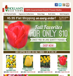 Holl and Blub Farms Newsletter