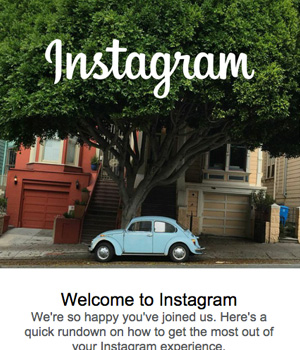 Instagram Newsletter