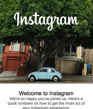 Instagram Newsletter