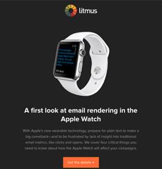 Litmus Newsletter
