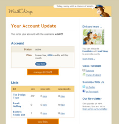 Mail Chimp Newsletter