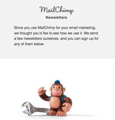 Mail Chimp Newsletter