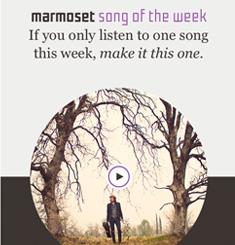 Marmoset Music Newsletter