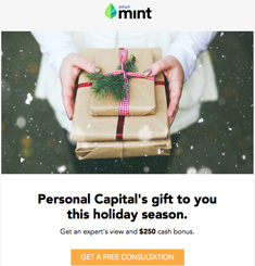 Mint Newsletter
