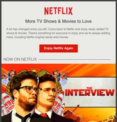 Netflix Newsletter