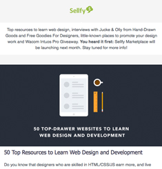 Sellfy Newsletter