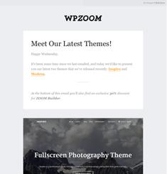 WPZoom Newsletter