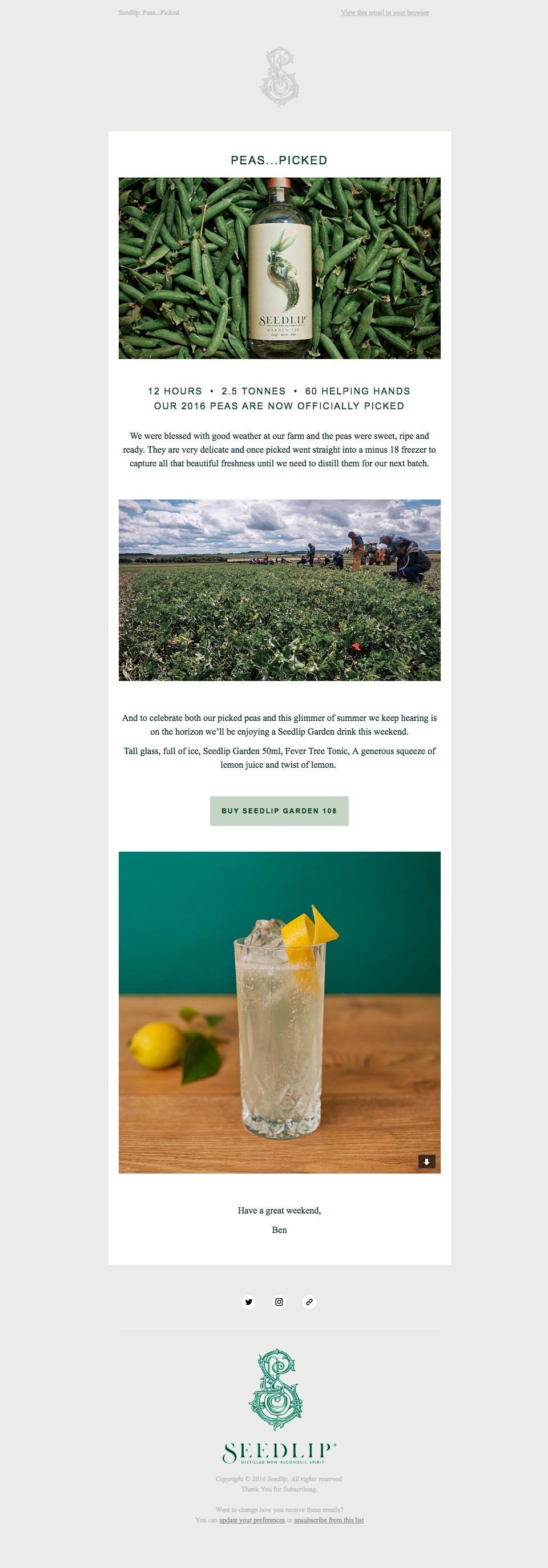 seedlip-newsletter